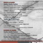 Locandina Venafro 20-21 maggio