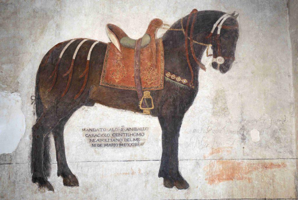 Afresco di un cavallo in rilievo - Castello Pandone Venafro (IS)